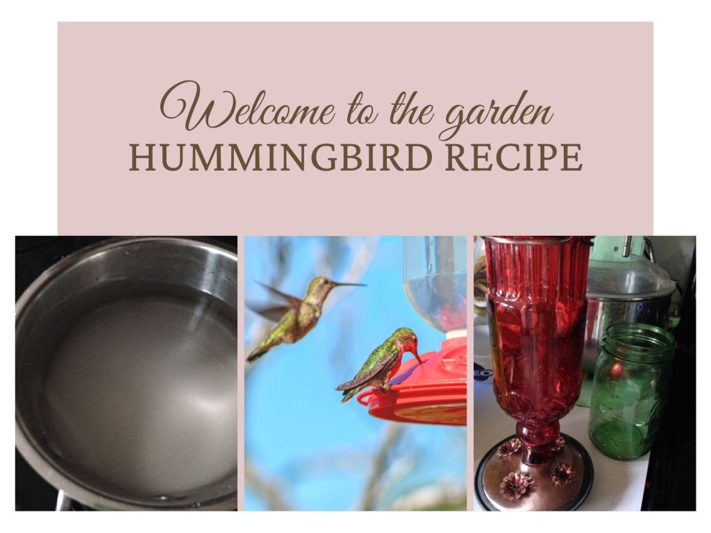 Hummingbird Recipe